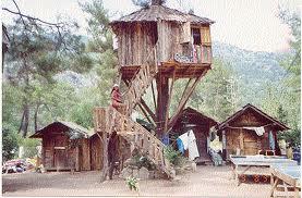 olimpos ağaç evler